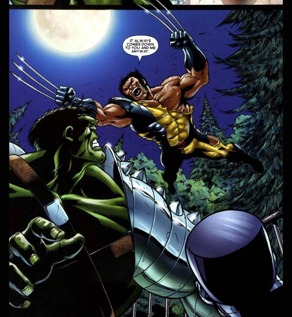 The Hulk VS Wolverine