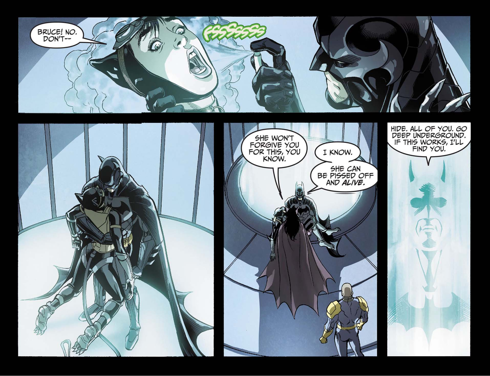 Catwoman Loves Batman Comicnewbies