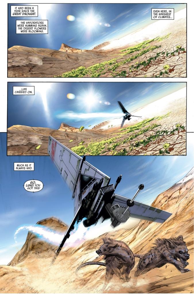 luke skywalker racing through beggars canyon