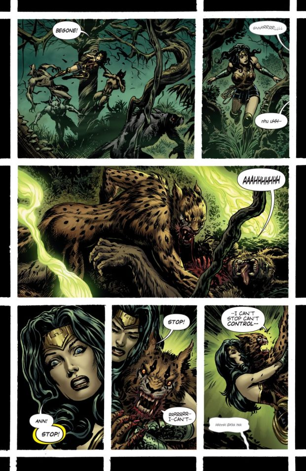 Wonder Woman And Cheetah Teams Up (Rebirth)