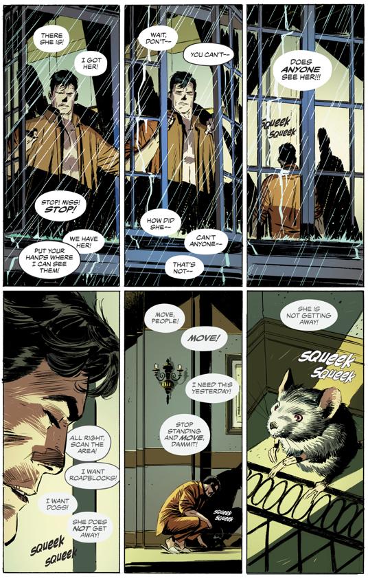 Catwoman Breaks Into Wayne Manor (Rebirth)