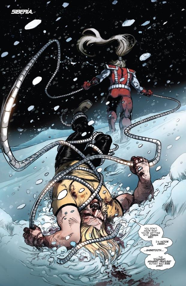 Sabretooth (Weapon X Vol 3 #18)